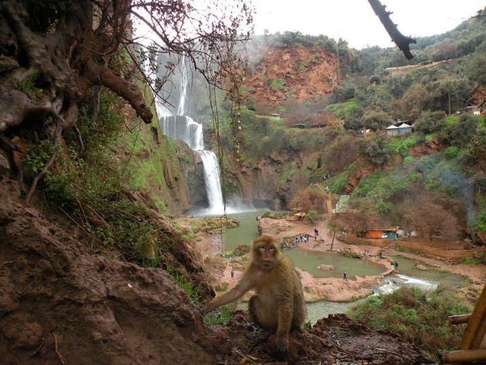 Водопад Узуд– Покрывало влюбленных в Марокко. 55765