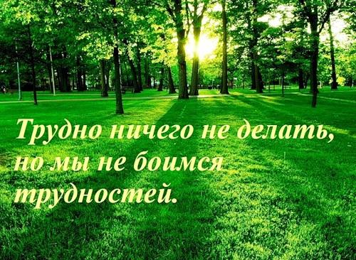 _0_36c16_59e0498a_L (500x366, 112Kb)