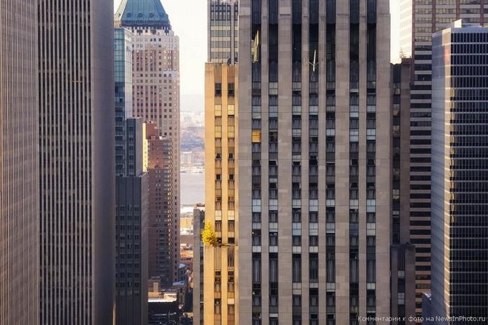Городские пейзажи Нью-Йорка на фото Эндрю Мейса (Andrew Mace)  11 (700x466, 107Kb)