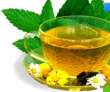 green-tea[1] (430x361, 73Kb)