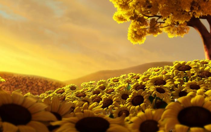 u11307_8438_FlowersCountry (700x437, 338Kb)