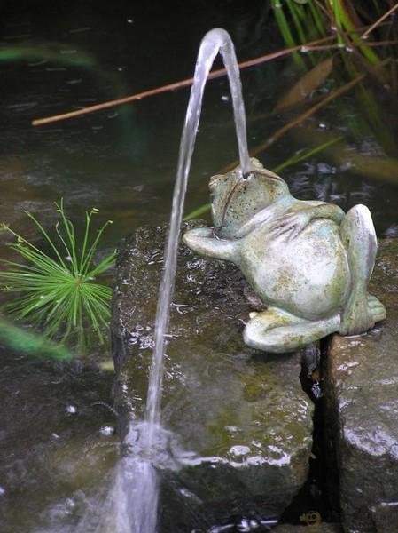 ландшафтШтучки_жаба (449x600, 77Kb)