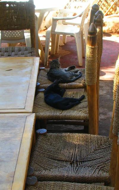 Водопад Узуд– Покрывало влюбленных в Марокко. 42070