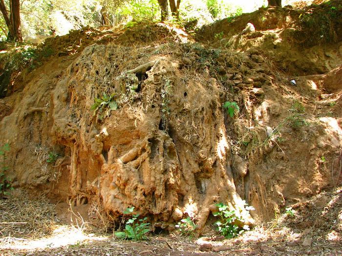 Водопад Узуд– Покрывало влюбленных в Марокко. 27648