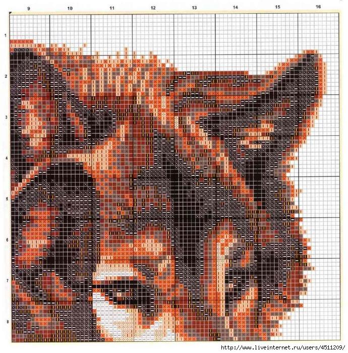 Wolves схема 2 (690x700,