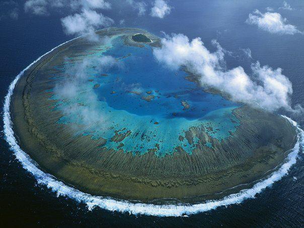 Остров Леди Масгрэйв, Большой Барьерный риф, Австралия (604x453, 52Kb)