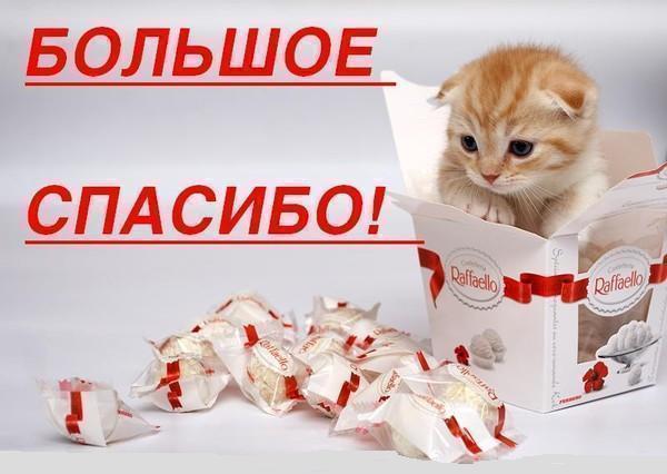 http://img0.liveinternet.ru/images/attach/c/5/87/763/87763590_14.jpg