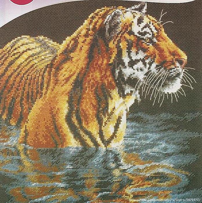 3971977_tigr01 (696x700, 424Kb)