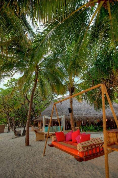 maldivy_21_foto_17 (467x700, 108Kb)
