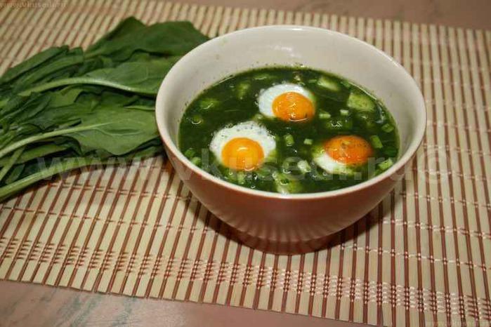 Зеленые щи яйцом рецепт фото