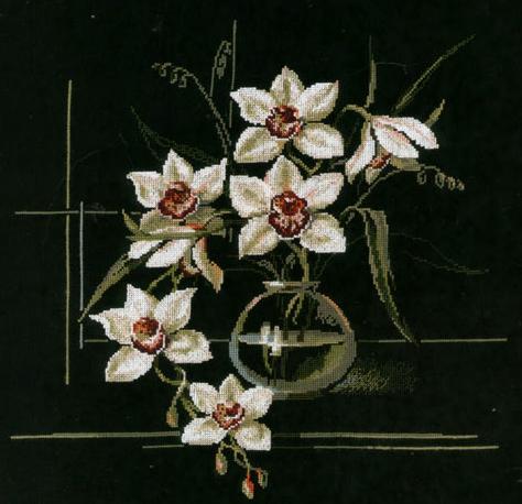 размножение орхидей черенками.