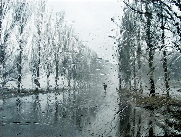 Погода дождь фото