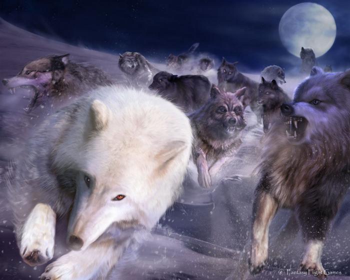 Wolfs (4) (700x560, 350Kb)
