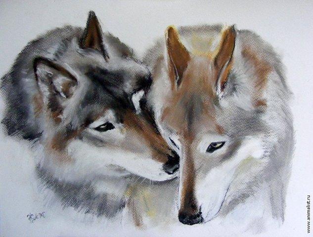 Wolfs (36) (633x480, 63Kb)