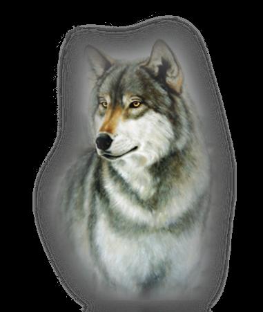 3996605_Wolf_1 (381x451, 278Kb)
