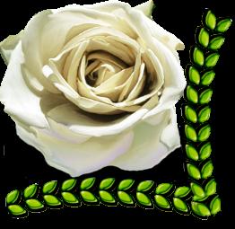 роза (262x255, 136Kb)