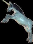 Превью Единороги на прозрачном слое (26) (221x300, 49Kb)