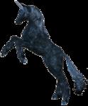 Превью Единороги на прозрачном слое (30) (248x300, 58Kb)