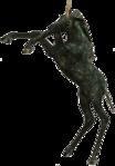 Превью Единороги на прозрачном слое (59) (209x300, 48Kb)