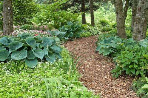 Посмотрели садовые дорожки, думаю,что Вам понравилось.  А, если Вы хотите что -то и другое сделать на даче и Вам...