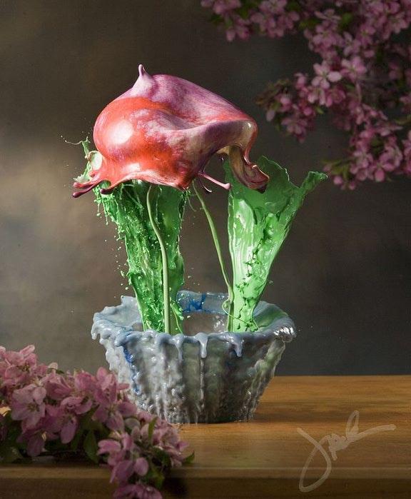 необычные цветы Jack Long 4 (576x700, 61Kb)