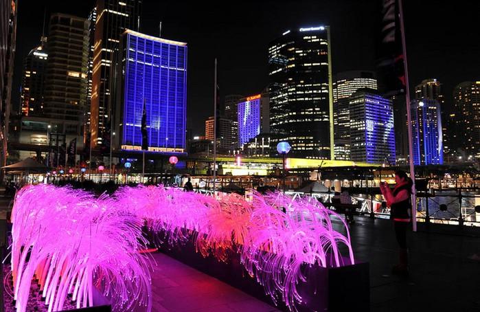 Красочный фестиваль света 2012 в Сиднее 22 (700x454, 121Kb)