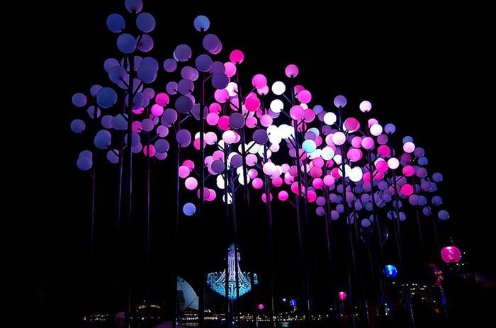 Красочный фестиваль света 2012 в Сиднее 26 (700x463, 66Kb)