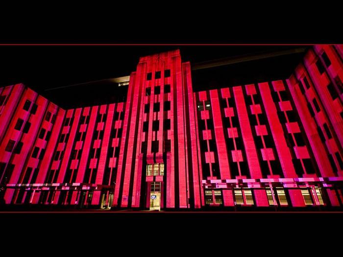 Красочный фестиваль света 2012 в Сиднее 30 (700x525, 82Kb)
