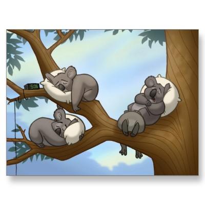 sleeping_koala_postcard-p239122958023658519envli_400 (400x400, 34Kb)
