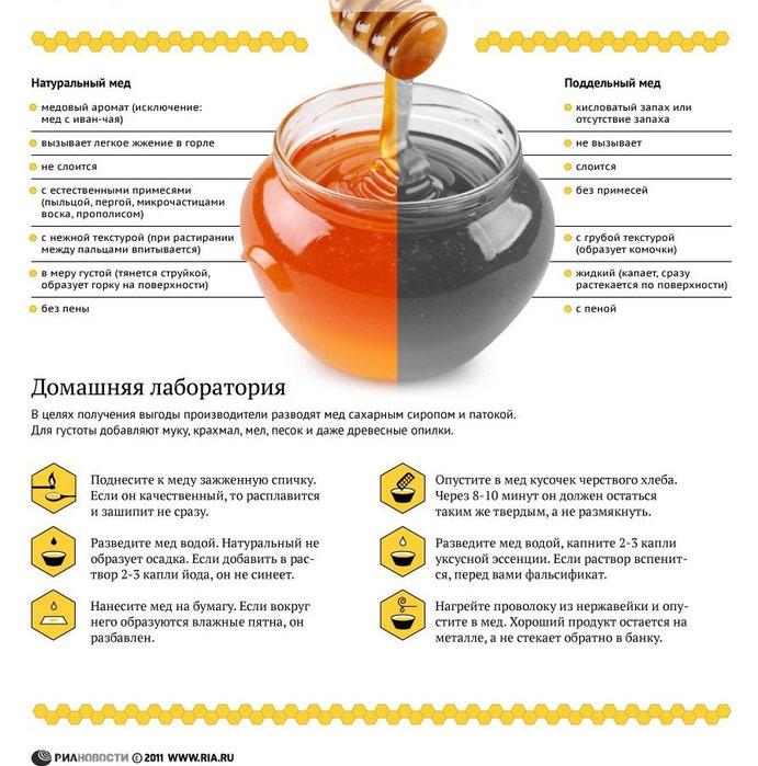 мед - поддельный или настоящий - как отличить (691x700, 107Kb)