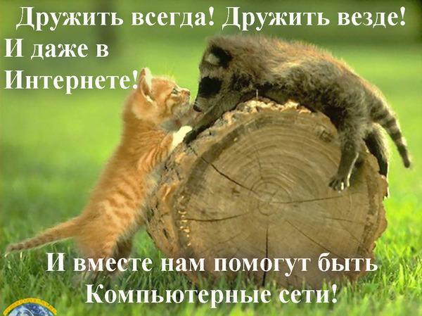 http://img0.liveinternet.ru/images/attach/c/5/88/126/88126008_f54612ec6916.jpg