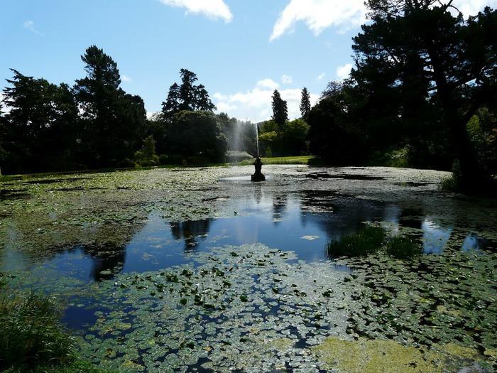 Powerscourt Gardens -Сад Пауэрскоурт . 54172
