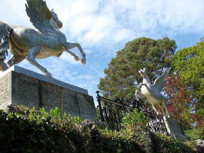 Powerscourt Gardens -Сад Пауэрскоурт . 62269