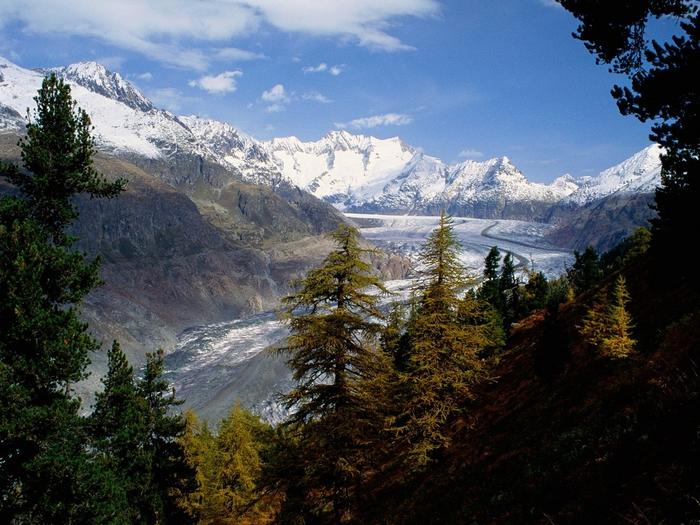 Grosser Aletsch Glacier, Berner Oberland, Switzerland (700x525, 338Kb)