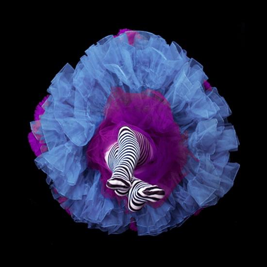 красивые женские ноги фото 10 (550x550, 83Kb)