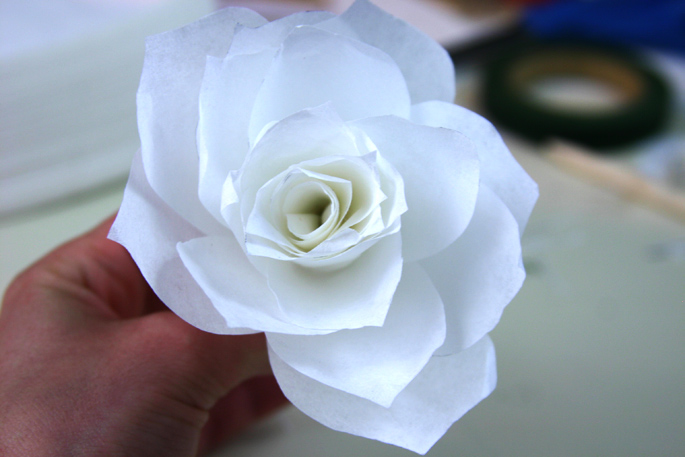 roses_step5 (685x457, 136Kb)