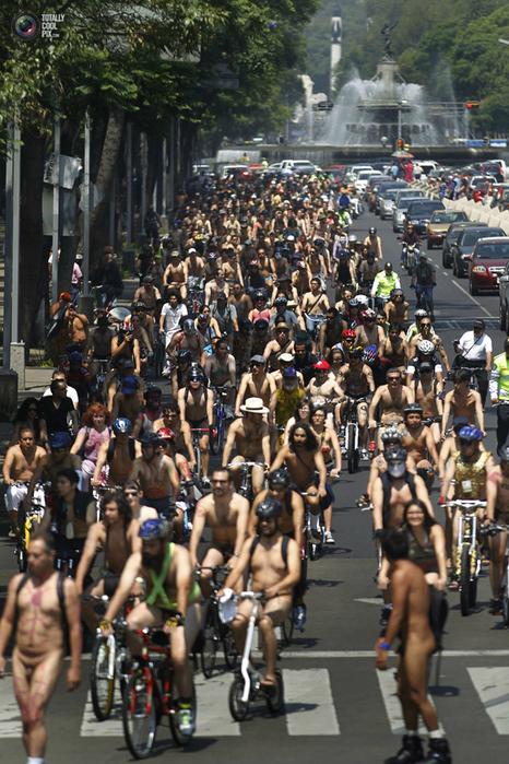 голые велосипедисты фото нудистов 9 (466x700, 487Kb)