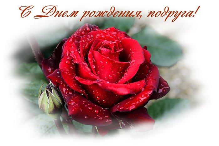 2835299_S_DNYoM_ROJDENIYa_PODRYGA (699x466, 55Kb)