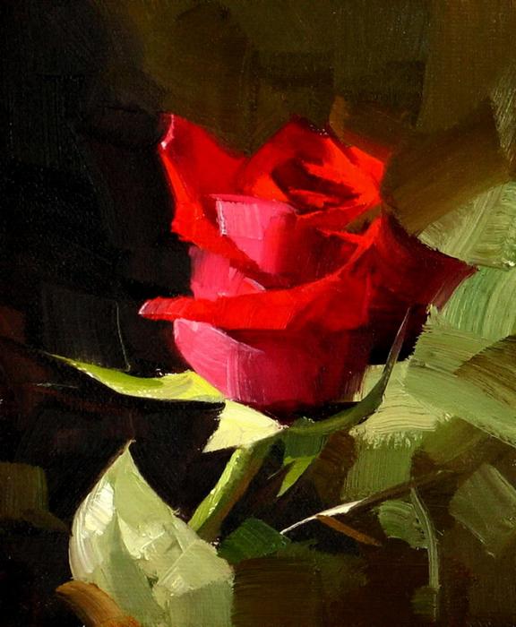 Red Rose 3 (576x700, 432Kb)