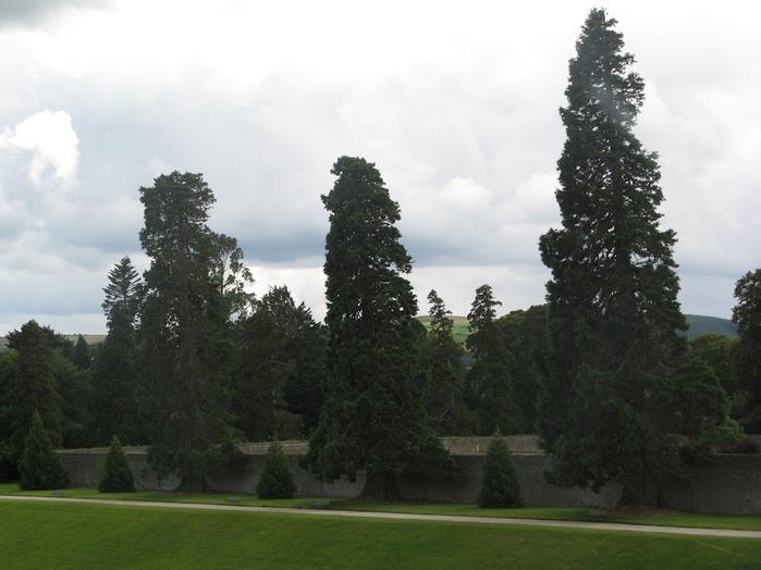 Powerscourt Gardens -Сад Пауэрскоурт . 42616