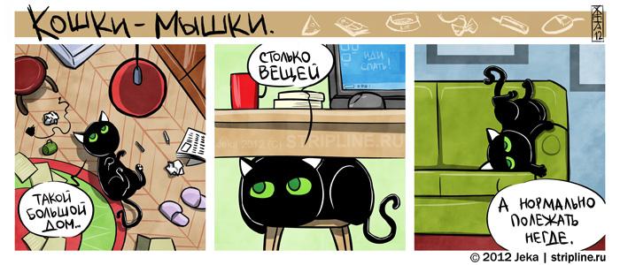 2012 Jeka stripline.ru,Кошки-Мышки,котэ,прикольные картинки с кошками,песоч