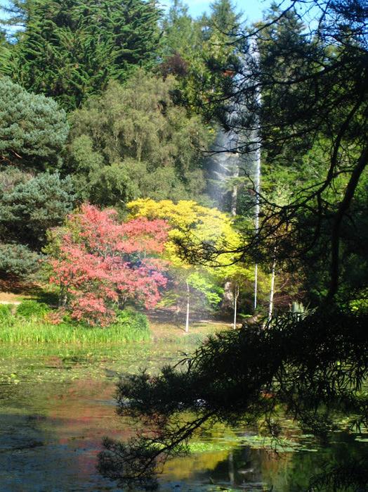 Powerscourt Gardens -Сад Пауэрскоурт . 84988