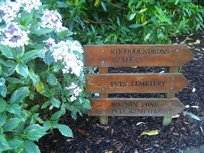 Powerscourt Gardens -Сад Пауэрскоурт . 47902