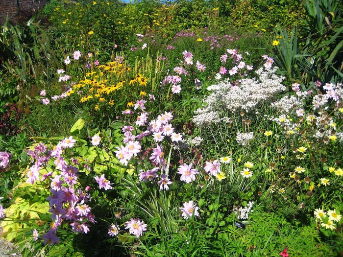 Powerscourt Gardens -Сад Пауэрскоурт . 95962