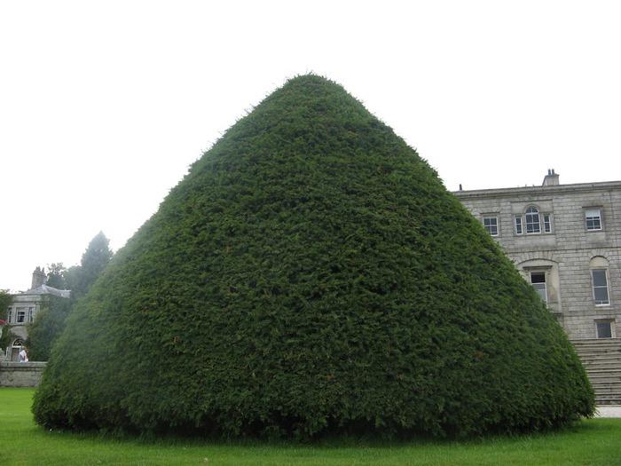 Powerscourt Gardens -Сад Пауэрскоурт . 43061
