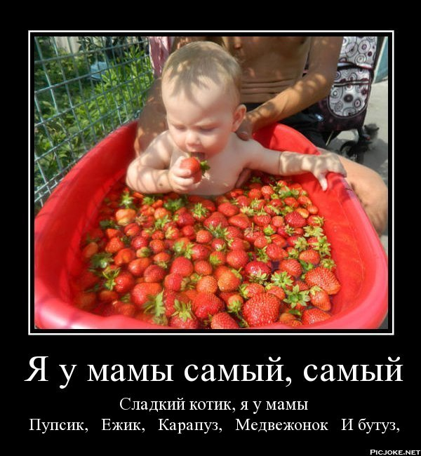9-ru-768544d439f735efcc08dc02b336522d.ip_176.67.3.78 (600x650, 79Kb)