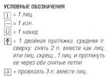 opisanie8 (224x156, 10Kb)