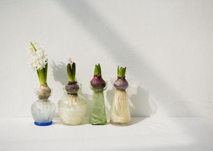 Ванильные фотографии цветов от Sozaijiten 4 (700x496, 52Kb)