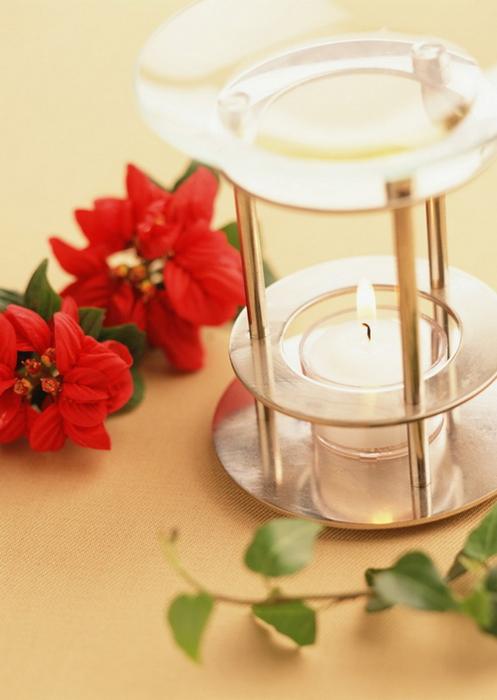 Ванильные фотографии цветов от Sozaijiten 13 (497x700, 271Kb)