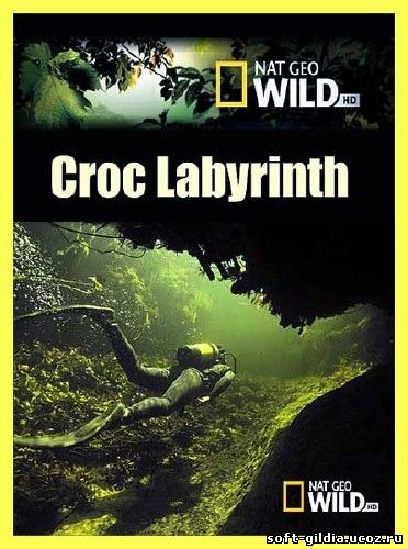 krokodilovyj_labirint-2011 (372x500, 47Kb)